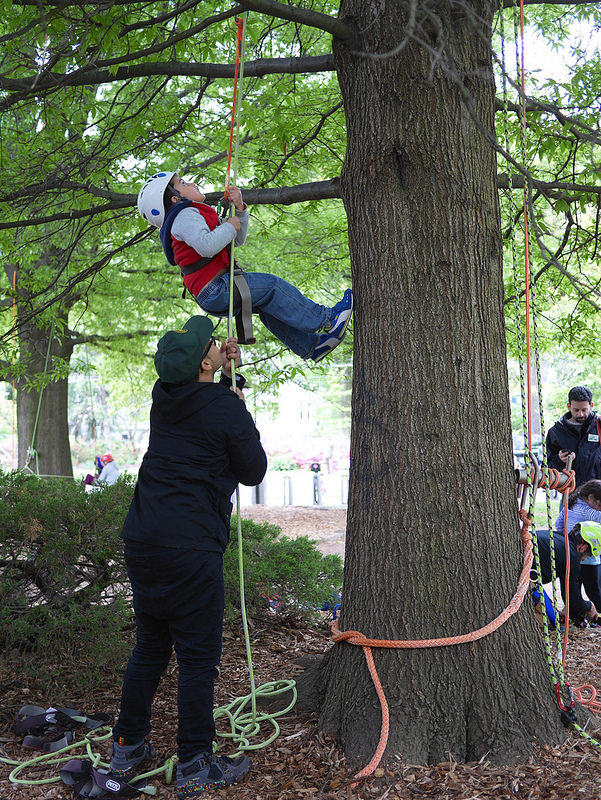 Kids Tree Climbing « Greenfest