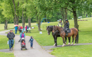 Did you meet the Park Police horses?