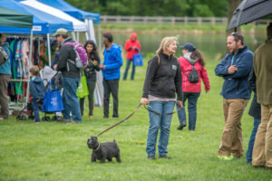 Families and dogs enjoyed GreenFest 2017!
