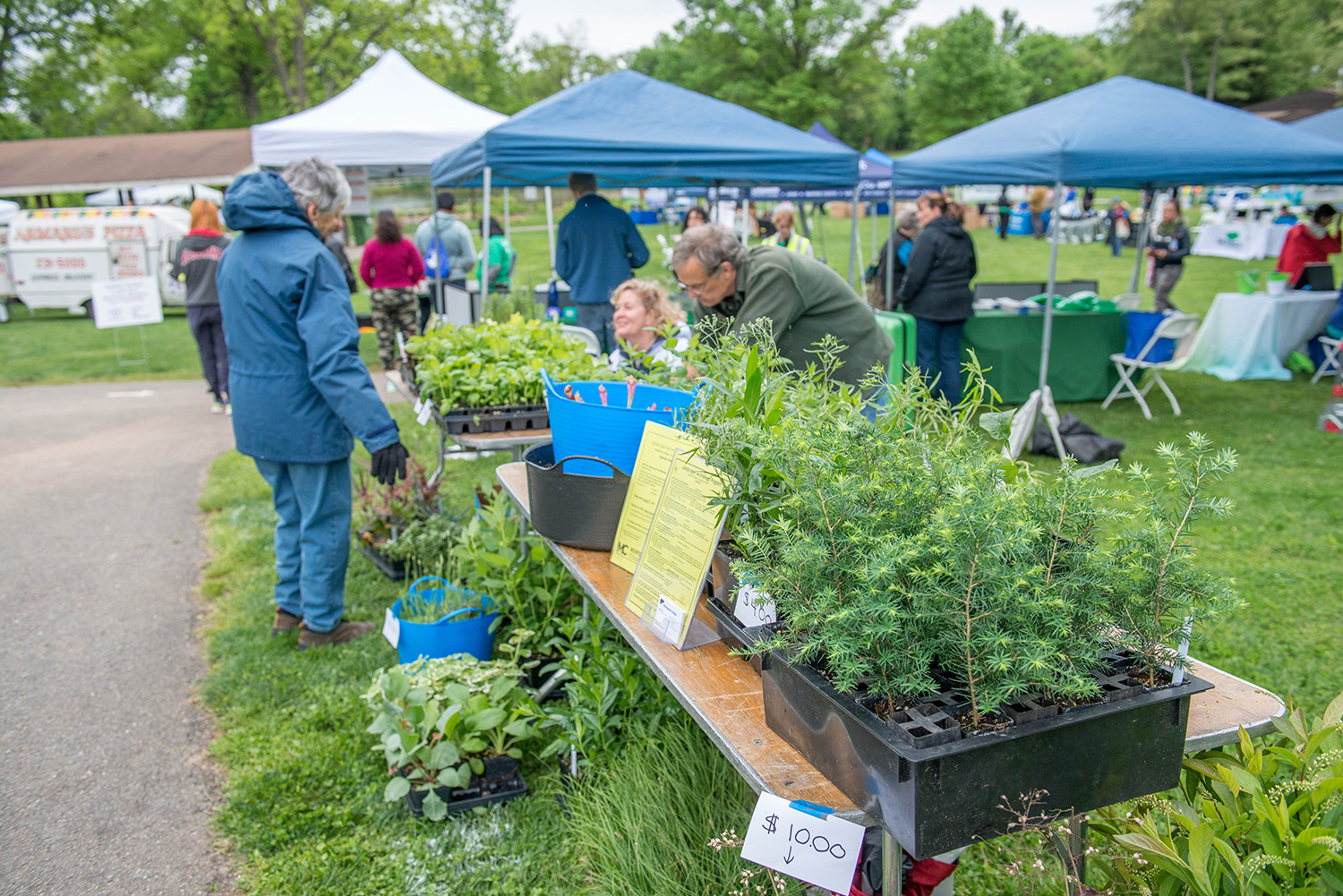 Native plant sale at GreenFest 2017